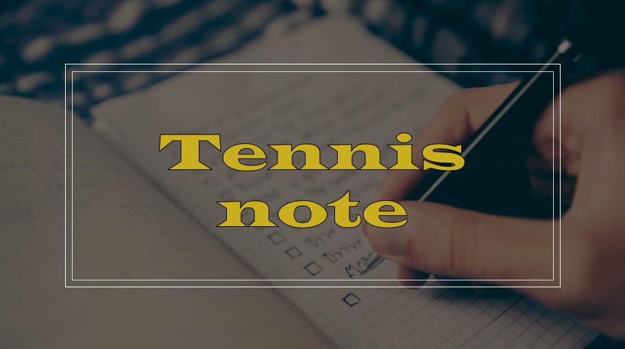テニスノートの書き方、例